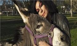 ازدواج با حیوانات در غرب + تصاویر - صفحه 2