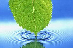 14 اثر شگفت انگیز آب بر روی بدن - عصر دانش
