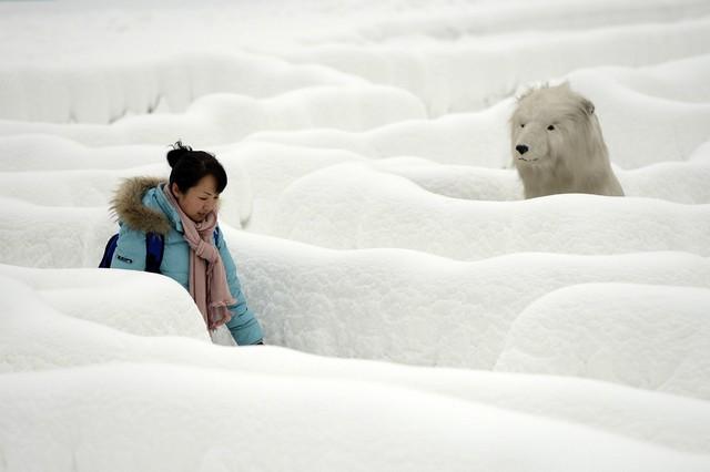 هزار توی برفی در چین