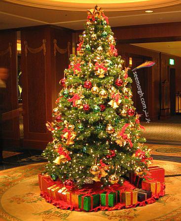 درخت های زیبای کریسمس عکس