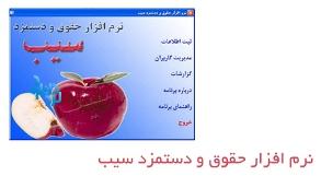 دانلود نرم افزار حسابداری حقوق و دستمزد سیب