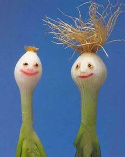 http://funny-photo.blogfa.com/