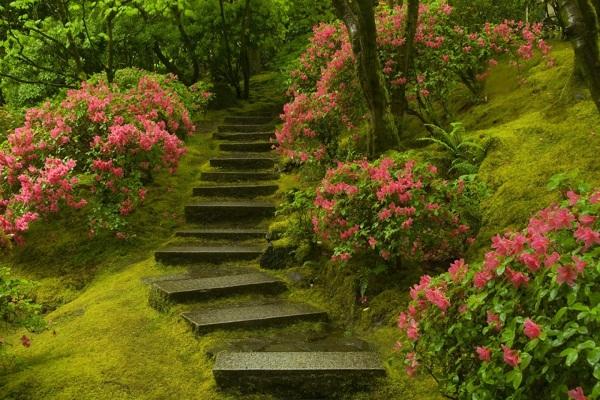 زیباترین باغ طبیعی جهان