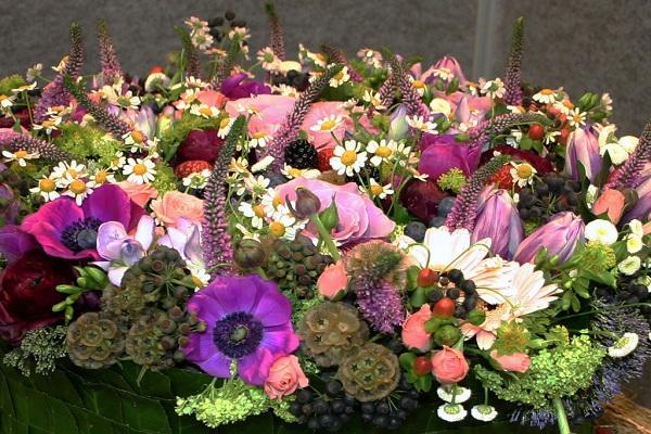 طبیعت زیبای گلها