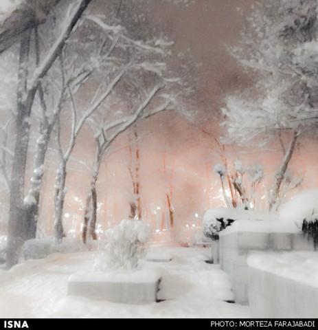عکس شب های برفی