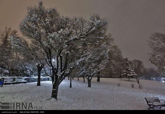 عکس پارک ملت مشهد در شب