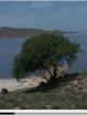 دریاچه ارومیه ؛ از زیبایی رویایی تا ساقیان محیط زیست (فیلم)