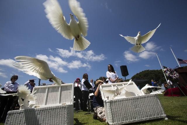 یادبود قربانیان جنگ