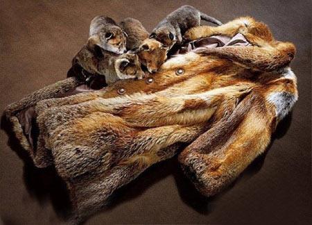 کله یوزپلنگ فلش مموری مار پیتون دندان نیش گرگ پوست مار پوست روباه پوست آهو پلنگ و کانگرو پالتو روباه بهشت شکارچی