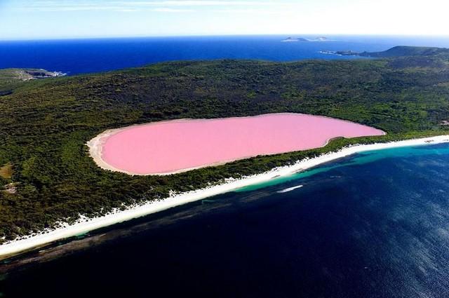 دریاچه هیلیر، استرالیا