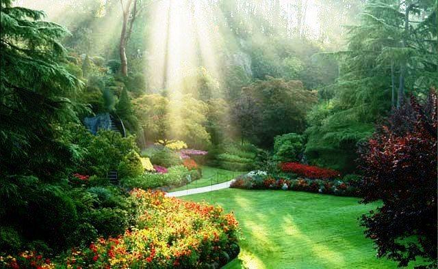 دانلود دیرین دیرین  فیلم بزرگترین باغ گل دنیا (+عکس)