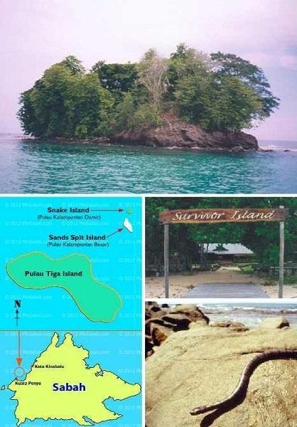 مرموزترین جزیرههای مار (+عکس)
