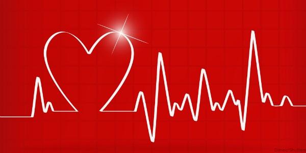 ذخیره 1600 قلب انسان در رایانه