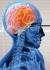هر 26 دقیقه یک ایرانی بر اثر سکته مغزی می میرد/ مجلس درگیر پیاده روی ظریف و حصر و فتنه و الهام چرخنده ...!