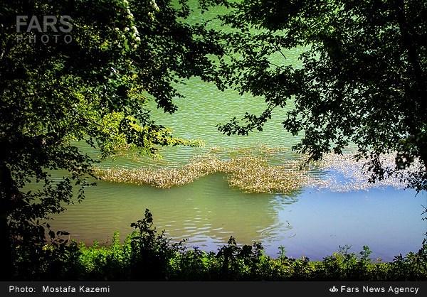 طبیعت بهاری دریاچه چورِت - ساری (عکس)