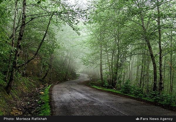 بهشت بهاری ماسال - گیلان (عکس)
