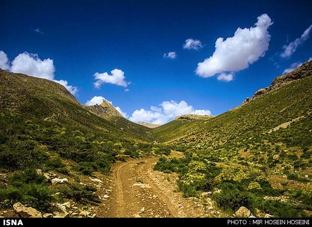 طبیعت چشمه ناز ونک - سمیرم اصفهان (عکس)