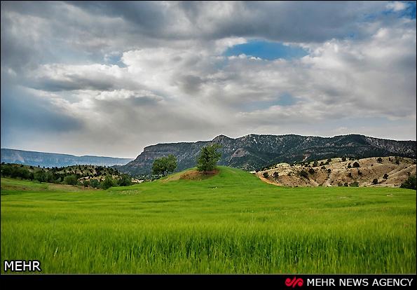 طبیعت بهاری روستای گردکوهه لرستان (عکس)