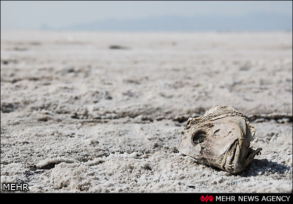 آخرین نفس های دریاچه ارومیه (عکس)