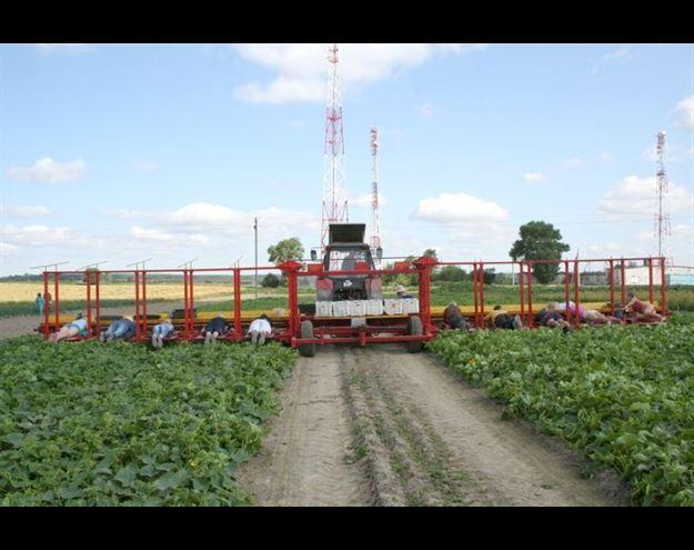 عکس جالب شغل جدید اخبار کشاورزی اخبار جالب
