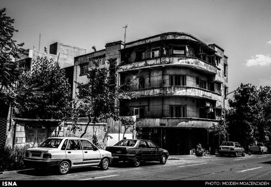 رها شده در شهر (عکس)