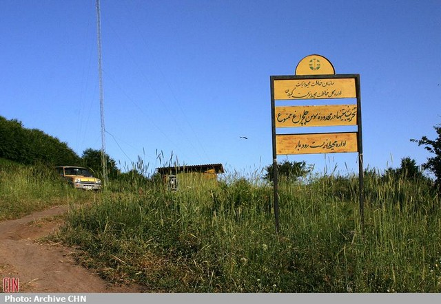داماش گیلان؛ روستای گل سوسن چلچراغ (عکس)