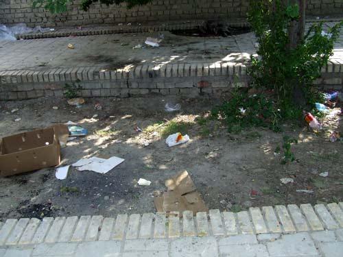 هر ماه در خیابان انقلاب ۹۰ تن کاغذ میمیرد!