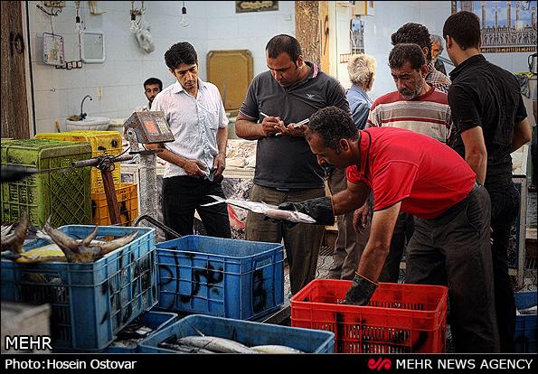 بازار ماهی و میگو بوشهر (عکس)