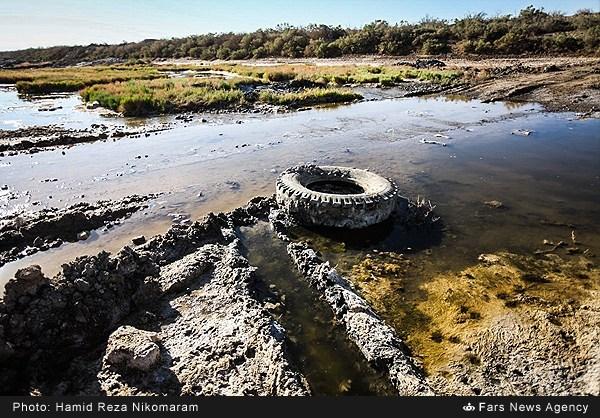 خشکسالی باتلاق گاوخونی (عکس)