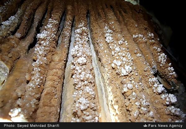 غار چال نخجیر دلیجان - استان مرکزی (عکس)
