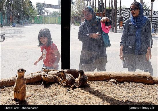 پستاندار نادر میرکِت در تهران (عکس)