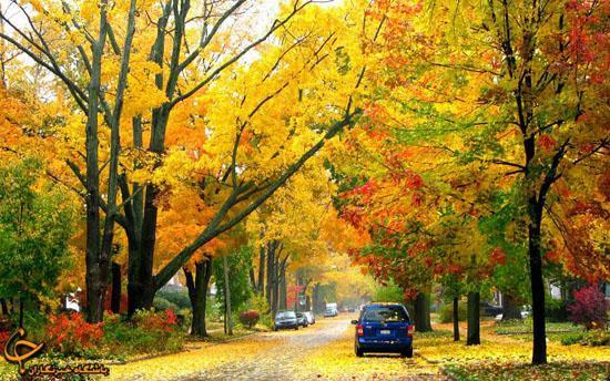 این شهر زیباترین پاییز دنیا را دارد (+ع )