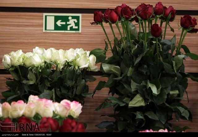 نمایشگاه گل و گیاه تهران (عکس)