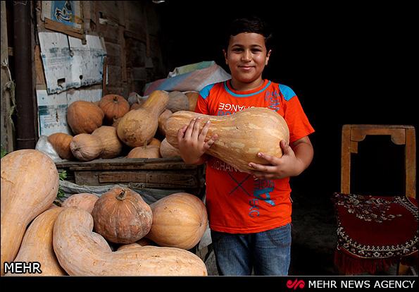 بازارهای محلی آمل (عکس)