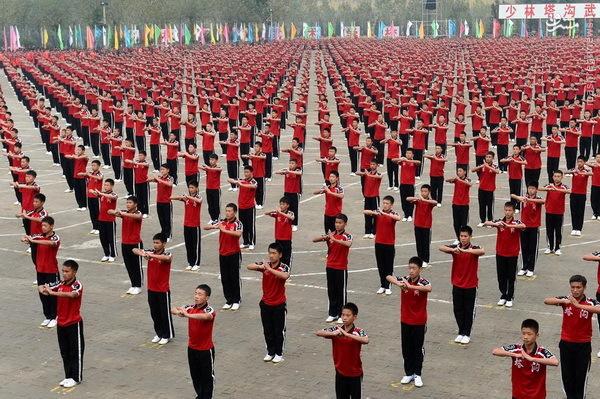 چینی های منظم (عکس)
