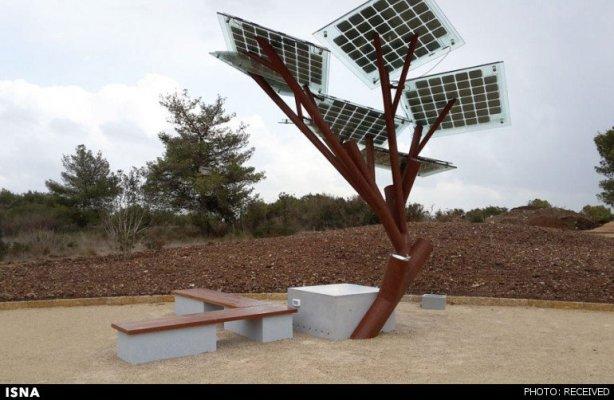 درختی با قابلیت وایفای و شارژ تلفن(+عکس)