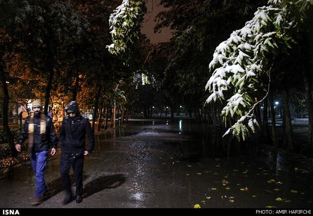 نمایندگی یو پی اس زینر در مشهد