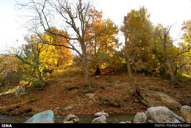 طببیعت پاییزی همدان (عکس)