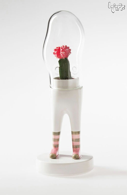 گلدان هایی که پا دارند! (+عکس)
