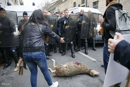 تظاهرات گوسفندی در پاریس! (عکس)