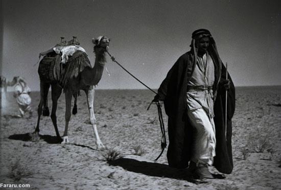 عربستان پیش از نفت؛ بادیهنشینی (عکس)
