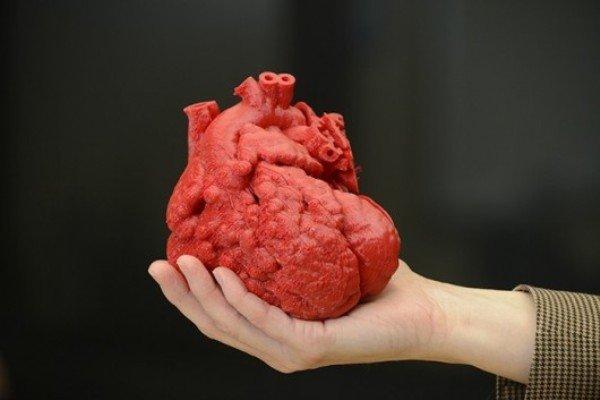 تصاویر 6 عضو بدن که چاپ شدند - عصر دانش