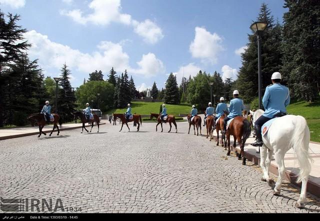 ماجرای اسب ها در مراسم استقبال از اردوغان چه بود؟