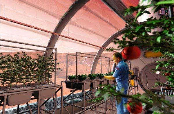 ساکنان مریخ غذای ۷ ساله را می خورند