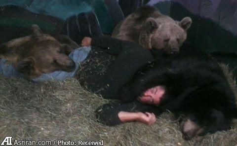 عشق میان انسان و خرس (+عکس)