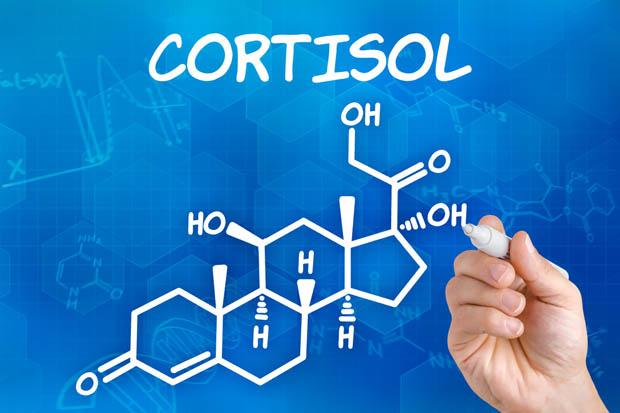 نوسان کورتیزول خون خطر مرگ را افزایش میدهد