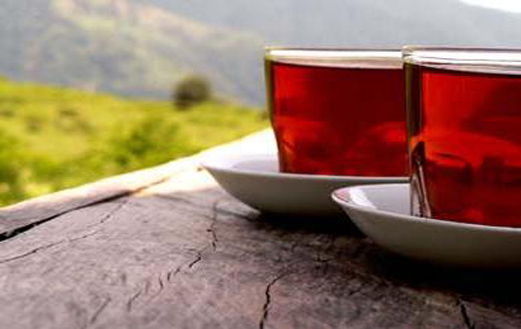 چای، سپری در برابر بیماری ها