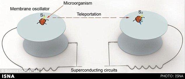 دستیابی فیزیکدانان به فناوری دورنوردی موجودات زنده