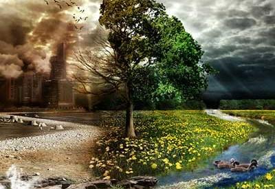 محیط زیست در فضای صلح آمیز بهتر نفس می کشد