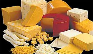 درمان سرطان با پنیر!